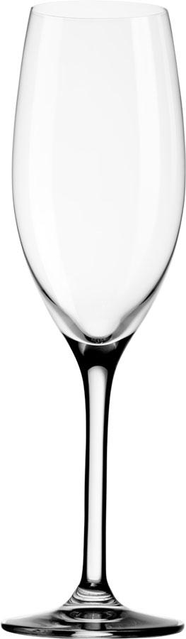 Champagnerglas_Mio_M600